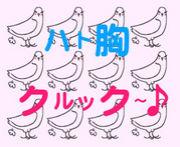 鳩胸クルック〜♪