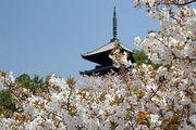 2007京都古建築旅行