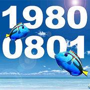☆8081会☆