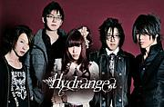 Hydrangea -咲き誇れ紫陽花-