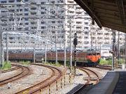 さようなら湘南電車、113系