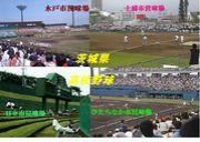 茨城県高校野球