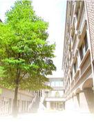 川崎看護短期大学