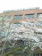 東北福祉大学2007年度入学者