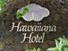 Hawaiiana Hotel