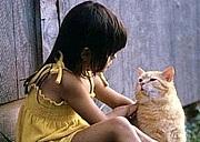 猫 的 女 子