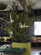 安古市高校2008年卒3‐9