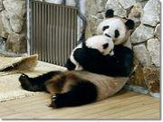 ◆抱っこして寝なきゃイヤッ!◆