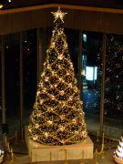 クリスマス被害者の会