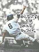 草野球チーム「アパッチ野球軍」