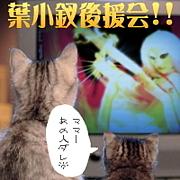 ■葉小釵後援会日本支部■