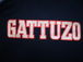 TEAM  GATTUZO