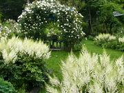 福祉庭園 ベルスーズ