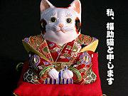 埼玉どうでしょう(for GAY)