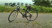 ロードバイクが好き神奈川
