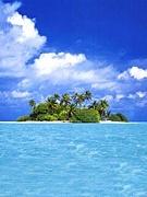 無人島が似合う男が好き