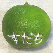 筑波大学徳島県人会
