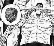 白ひげ=小沢一郎先生