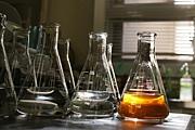 発酵生産科学研究室〜2009〜