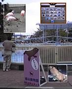 城山動物園へようこそ〜!