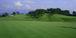 ゴルフコンペ「西村杯」