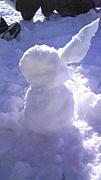 THCU 雪だるま