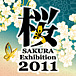 桜 Exhibition