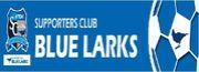 We're BLUE LARKS!