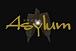 ASYLUM(アサイラム)