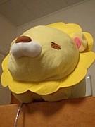 丸ライオン