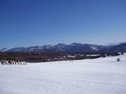 武蔵野音楽大学スキー部