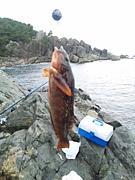 八戸釣り情報