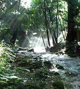 ∬福島∬釣り情報交換所
