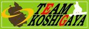 TEAM KOSHIGAYA