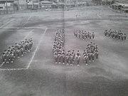 """里庄""""1981-1982""""集合"""