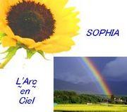 虹と向日葵