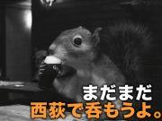 (続)西荻飲み部