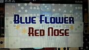 * Blue Flower * Red Nose *