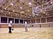 〜大和たましぃバスケット部〜