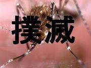 蚊撲滅運動