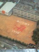 獅子のマークの横田小学校