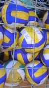 ボールが好きっ(゜∀。)