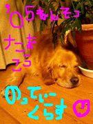 05年卒玉高☆のってぃークラス