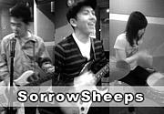 SorrowSheeps