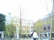 京大総人H18年度入学生コミュ