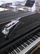 Trumpeter-白石実♪