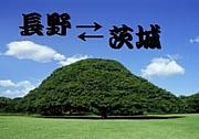 長野から茨城に出てきた人!