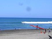 Surfer Girls -New Zealand-