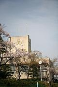 昭和43年生宮山台中学卒業生