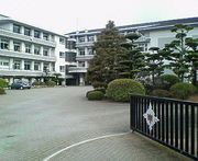 柚木イモ軍団